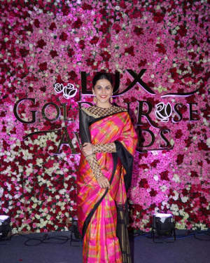 Taapsee Pannu - Photos: Red Carpet Of Lux Golden Rose Awards 2017