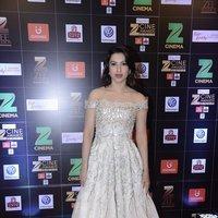 Gauhar Khan - Zee Cine Awards 2017 Red Carpet Photos   Picture 1481022