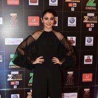 Zee Cine Awards 2017 Red Carpet Photos
