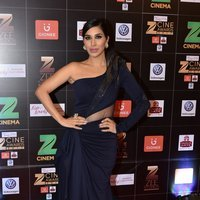Sophie Choudry - Zee Cine Awards 2017 Red Carpet Photos