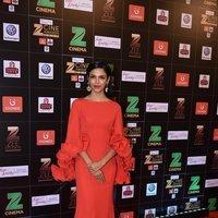 Shriya Pilgaonkar - Zee Cine Awards 2017 Red Carpet Photos