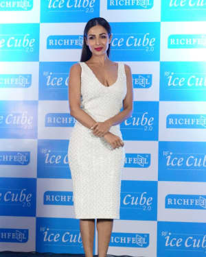In Pics: Malaika Arora Announced as Brand Ambassador Of Richfeel in a PC | Picture 1526271