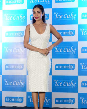 In Pics: Malaika Arora Announced as Brand Ambassador Of Richfeel in a PC | Picture 1526278