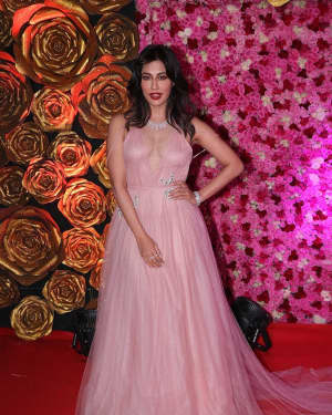 Chitrangada Singh - Photos: Lux Golden Awards 2018 Red Carpet
