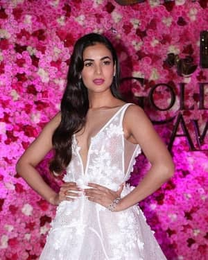 Sonal Chauhan - Photos: Lux Golden Awards 2018 Red Carpet   Picture 1612178