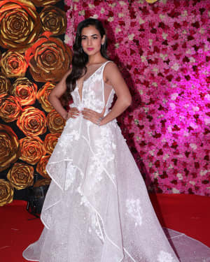 Sonal Chauhan - Photos: Lux Golden Awards 2018 Red Carpet