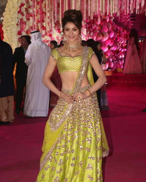 Urvashi Rautela - Photos: Azhar Morani & Tanya Seth Wedding Reception