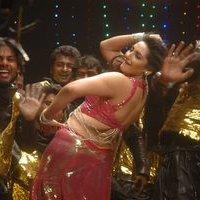 Actress Ragini Dwivedi Hot Stills   Picture 1444932