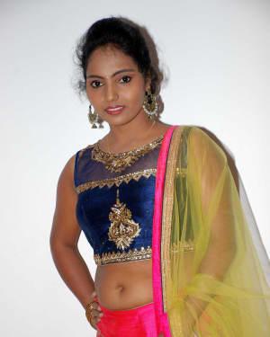 Nayana (Kannada Actress) - Shankanaada Film Audio Release Pictures | Picture 1536093