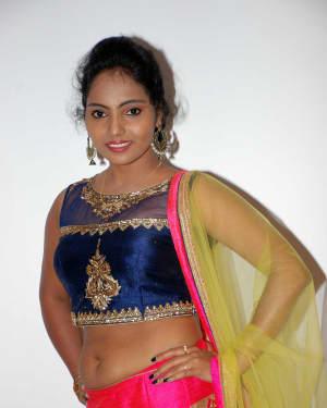 Nayana (Kannada Actress) - Shankanaada Film Audio Release Pictures | Picture 1536094