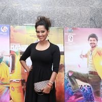 Sanjana Singh - MGR Sivaji Academy Awards Function 2016 Photos
