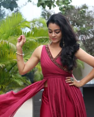 Gayathri Photos at Vella Raja Press Web Series Meet