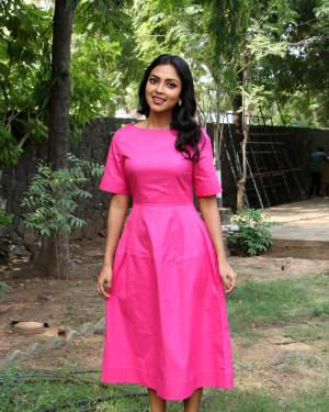 Amala Paul - Raatchasan Movie Success Meet Photos   Picture 1604806
