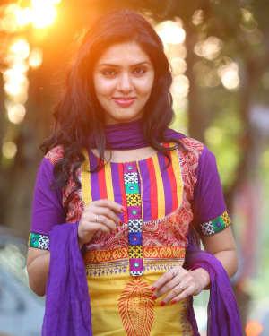 Actress Gayathri Suresh Portfolio Photoshoot | Picture 1525611