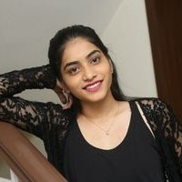 Punarnavi Bhupalam at Pittagoda Press Meet Photos