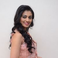 Neha Hinge during Sri Valli Movie Press Meet Photos