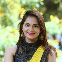 Actress Aswini Hot in Yellow Saree Photos   Picture 1491876