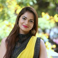 Actress Aswini Hot in Yellow Saree Photos   Picture 1491878