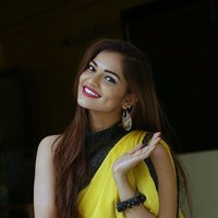 Actress Aswini Hot in Yellow Saree Photos   Picture 1491894