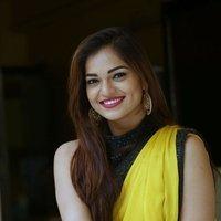 Actress Aswini Hot in Yellow Saree Photos   Picture 1491891