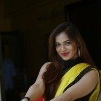 Actress Aswini Hot in Yellow Saree Photos   Picture 1491895
