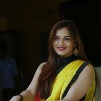Actress Aswini Hot in Yellow Saree Photos