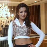 Catherine Tresa Hot at Gajendrudu Audio Launch Photos | Picture 1491936