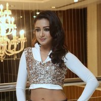 Catherine Tresa Hot at Gajendrudu Audio Launch Photos | Picture 1491937