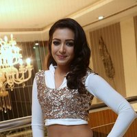Catherine Tresa Hot at Gajendrudu Audio Launch Photos | Picture 1491934