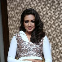 Catherine Tresa Hot at Gajendrudu Audio Launch Photos | Picture 1491951