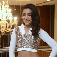 Catherine Tresa Hot at Gajendrudu Audio Launch Photos | Picture 1491939