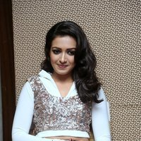 Catherine Tresa Hot at Gajendrudu Audio Launch Photos