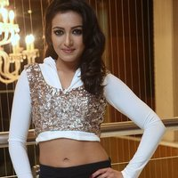 Catherine Tresa Hot at Gajendrudu Audio Launch Photos | Picture 1491940