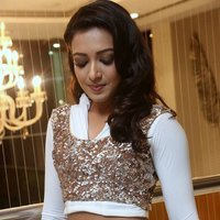 Catherine Tresa Hot at Gajendrudu Audio Launch Photos | Picture 1491931