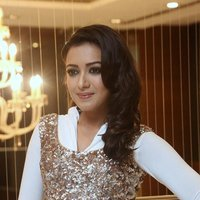 Catherine Tresa Hot at Gajendrudu Audio Launch Photos | Picture 1491941