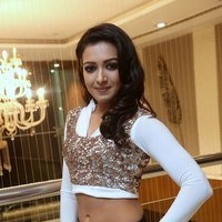 Catherine Tresa Hot at Gajendrudu Audio Launch Photos | Picture 1491933