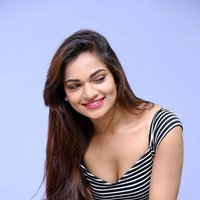 Aswini Hot at Pelliki Mundu Prema Katha Trailer Launch Stills   Picture 1493086