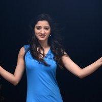 Actress Richa Panai Hot Pictures From Rakshaka Bhatudu Movie