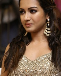 Catherine Tresa at Goutam Nandha Success Meet Photos