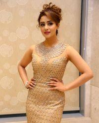 Actress Muskan Sethi at Paisa Vasool Audio Success Meet Photos | Picture 1523994