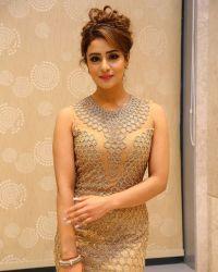 Actress Muskan Sethi at Paisa Vasool Audio Success Meet Photos | Picture 1523993