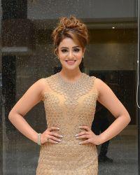 Actress Muskan Sethi at Paisa Vasool Audio Success Meet Photos | Picture 1523982