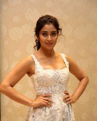 Actress Shriya Saran Hot at Paisa Vasool Movie Audio Success Meet Photos | Picture 1524082