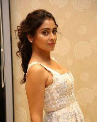 Actress Shriya Saran Hot at Paisa Vasool Movie Audio Success Meet Photos | Picture 1524100