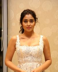 Actress Shriya Saran Hot at Paisa Vasool Movie Audio Success Meet Photos