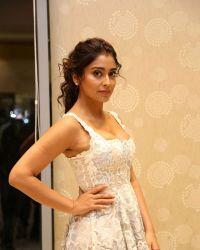 Actress Shriya Saran Hot at Paisa Vasool Movie Audio Success Meet Photos | Picture 1524099