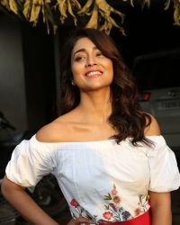 Actress Shriya Saran Photoshoot during Interview For Paisa Vasool   Picture 1524601
