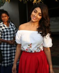 Actress Shriya Saran Photoshoot during Interview For Paisa Vasool   Picture 1524611