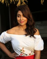 Actress Shriya Saran Photoshoot during Interview For Paisa Vasool   Picture 1524594