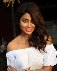 Actress Shriya Saran Photoshoot during Interview For Paisa Vasool   Picture 1524606